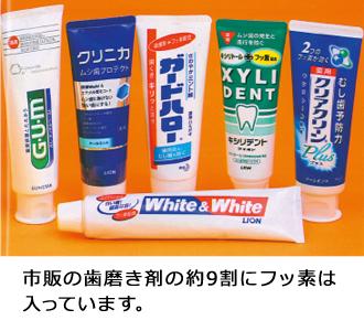 むし歯予防のためのフッ素歯磨き...